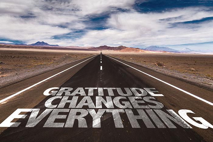Gratitude Changes Everything written on desert road